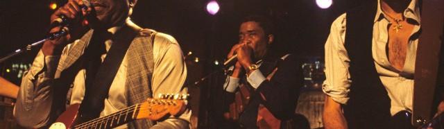 1960 à nos jours : la reconnaissance internationale du blues
